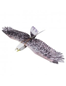 Foam EPP RC Airplane Eagle Model 1430mm Wingspan Aircraft Toy Gift